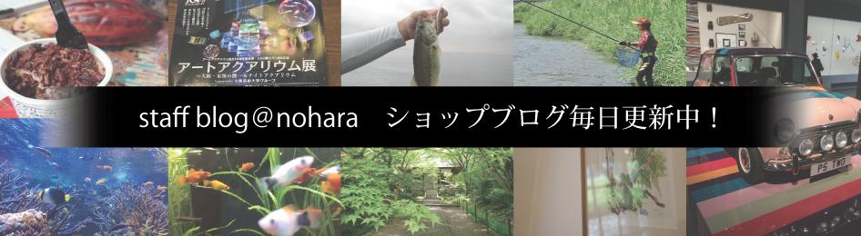 京都 メガネ ノハラ